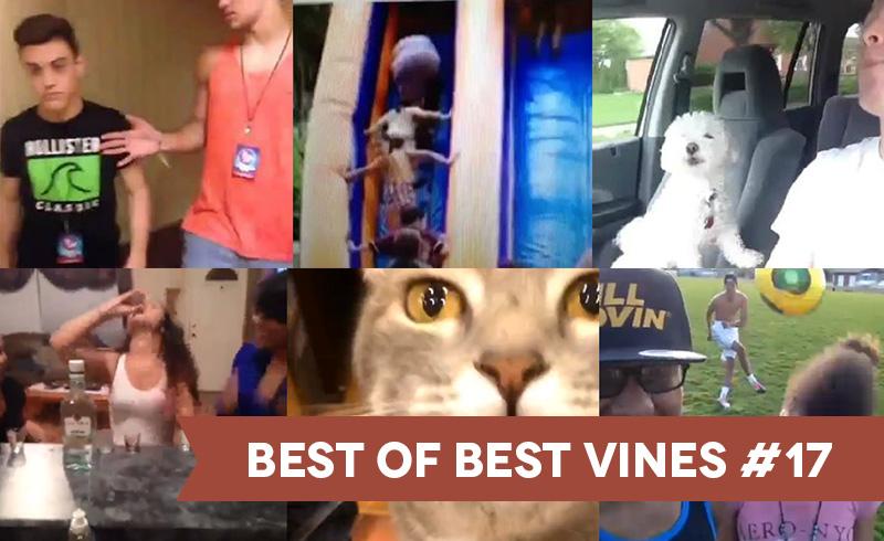 best-of-best-vines-17