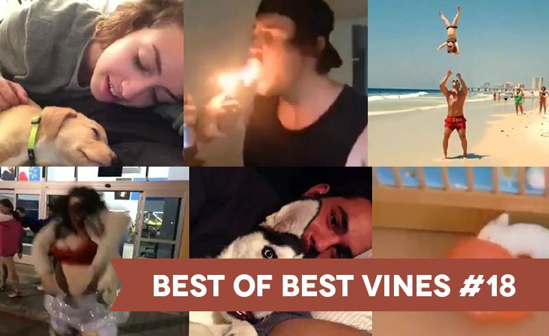 best-of-best-vines-numero-18