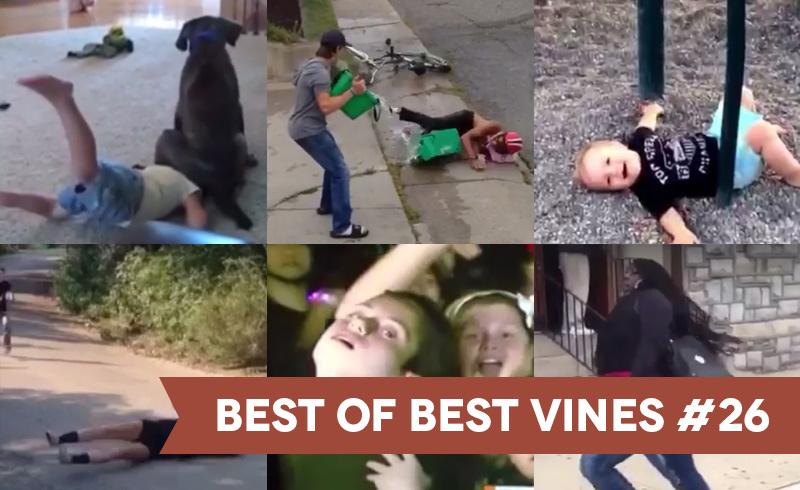 best-of-best-vines-26-os-10-melhores-vines-da-semana-blog-geek-publicitario