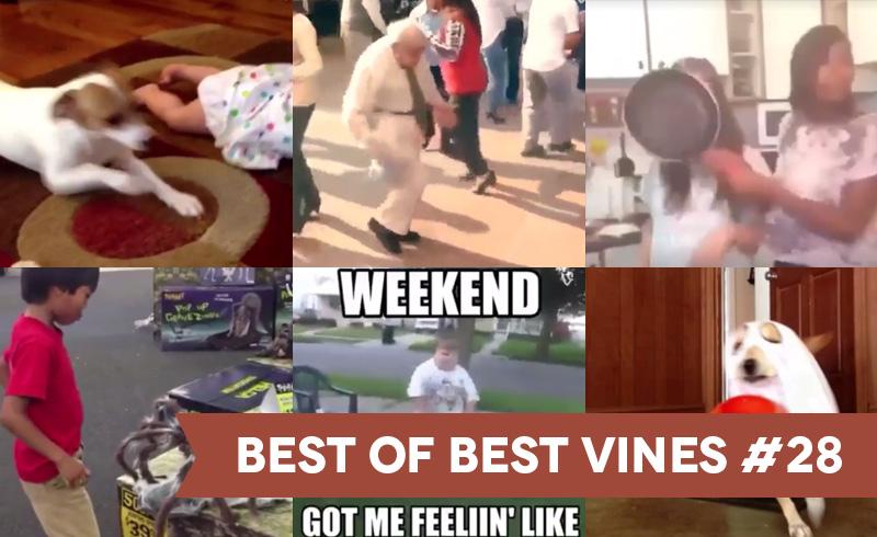 Best of Best Vines #28 – Os 10 Melhores Vines da Semana