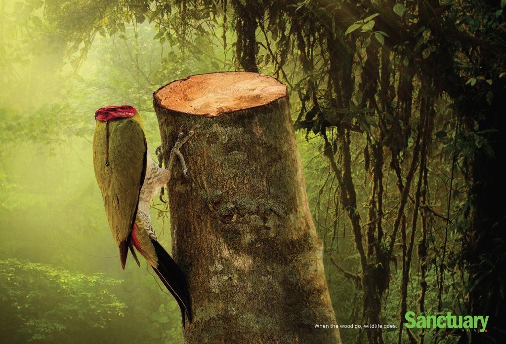 sanctuary-anuncio-protecao-devastacao-meio-ambiente-blog-geek-publicitario