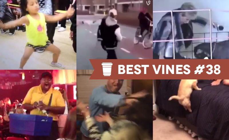 Best Vines #38 – Os 10 Melhores Vines da Semana