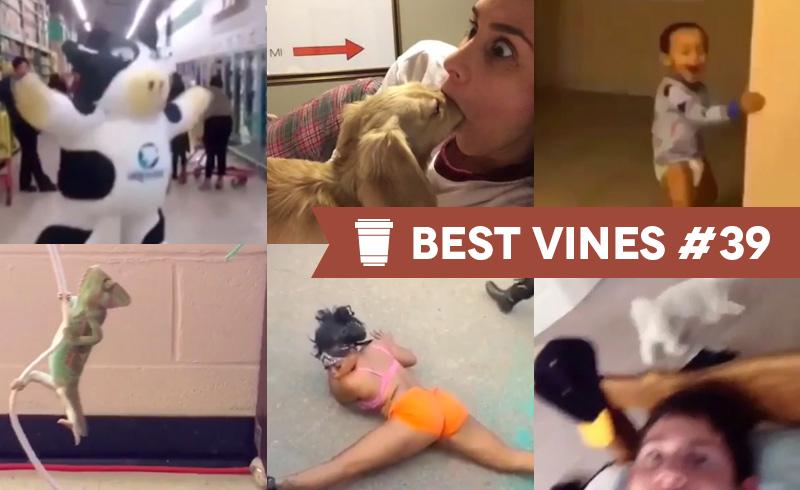 Best Vines #39 – Os 10 Melhores Vines da Semana