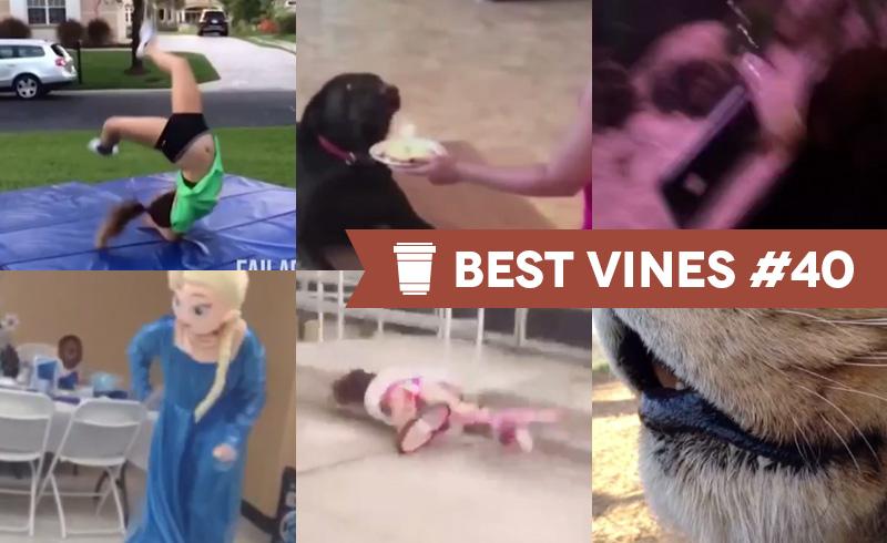 Best Vines #40 – Os 10 Melhores Vines da Semana
