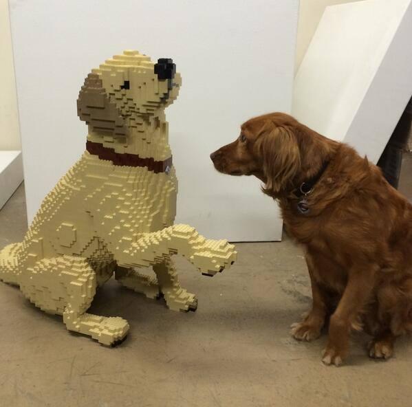 cachorro-lego-nathan-sawaya-blog-geek-publicitario
