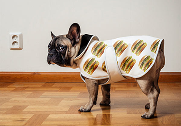 cachorrinho-roupa-estampa-big-mac-mc-donalds-blog-geek-publicitario