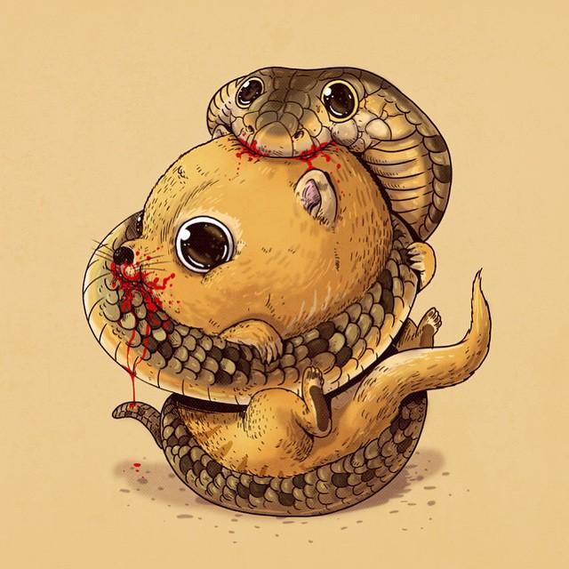 Cobra e mangusto