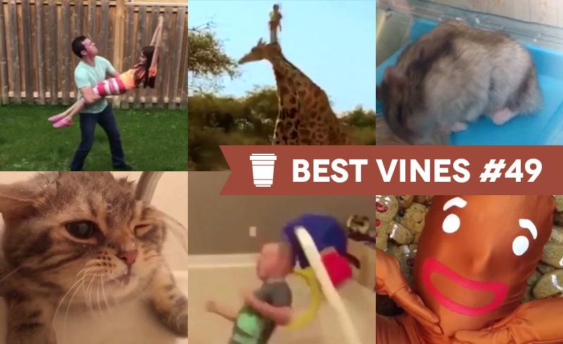 Best Vines #49 – Os 10 Melhores Vines da Semana