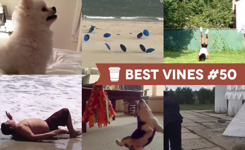 Best Vines #50 – Os 10 Melhores Vines da Semana