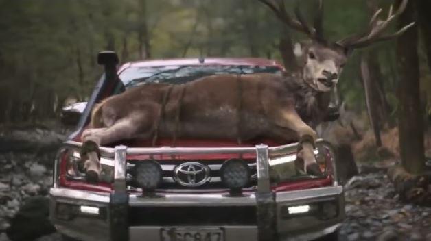 Toyota suspende comercial que mostrava animais pedindo para serem mortos