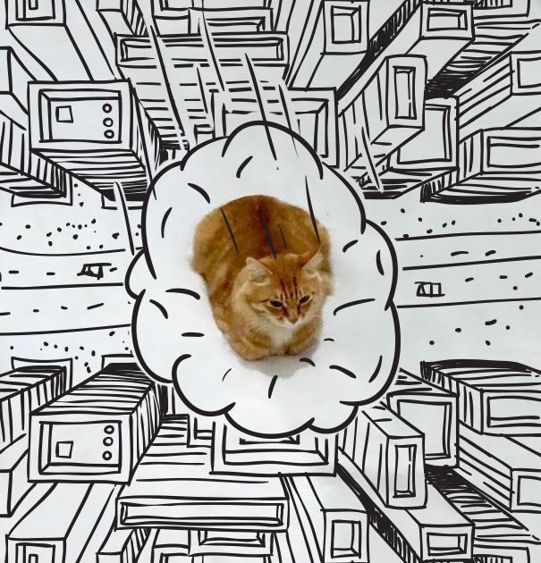 ilustracoes-em-foto-de-gato-gera-imagens-engracadas-2-blog-geek-publicitario