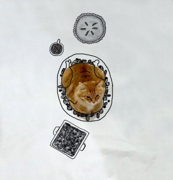 ilustracoes-em-foto-de-gato-gera-imagens-engracadas-4-blog-geek-publicitario