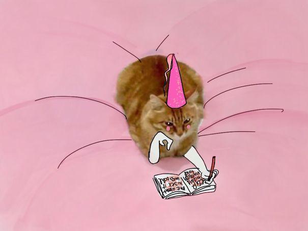 ilustracoes-em-foto-de-gato-gera-imagens-engracadas-7-blog-geek-publicitario