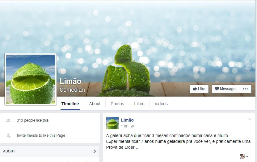 limao-pepsi-twist-pagina-facebook-blog-geek-publicitario