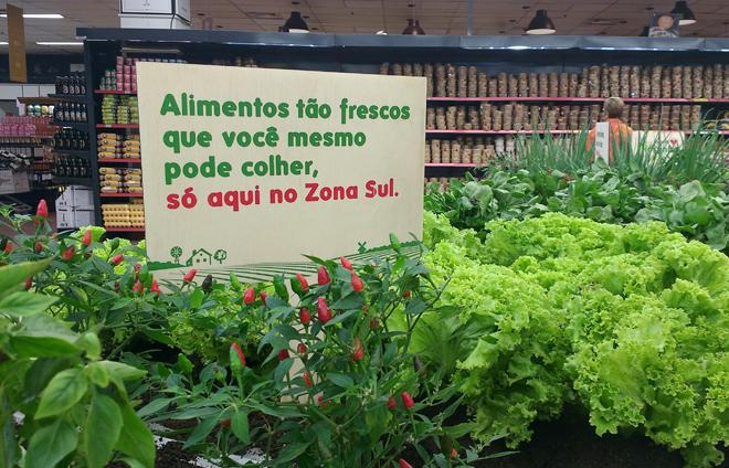 Hortinha Fresca: supermercado Zona Sul permite colher hortifruti na hora