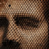 Netflix divulga cartaz e trailer da segunda temporada de Narcos
