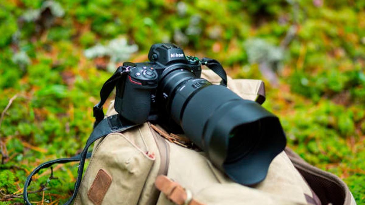 Nikon Disponibiliza Curso De Fotografia Online E Gratuito Gkpb Geek Publicitário