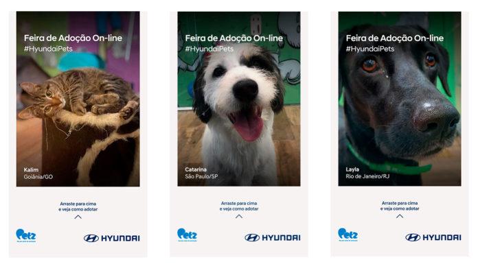 campanha de adoção da Hyundai.
